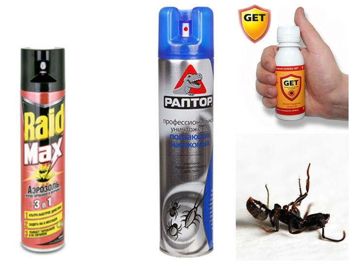 Наиболее популярными сегодня аэрозолями от муравьев являются ДЭТА, Комбат, Раптор, Get, Raid, Карбофос, Микрофос