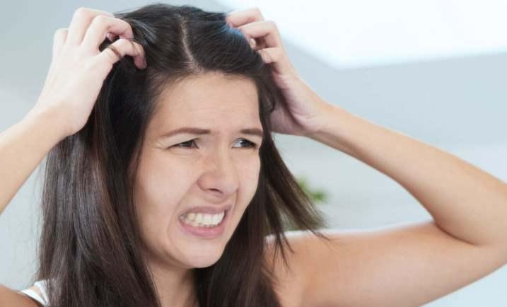 При заражении вшами чешется область затылка, в районе волос, ушей