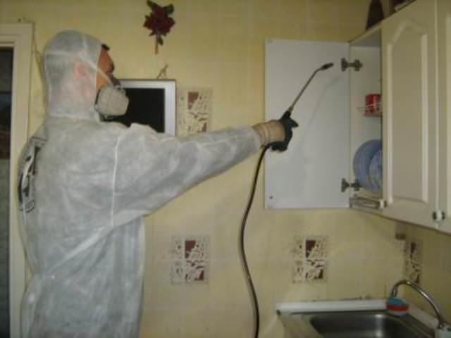 Препарат действует быстро, приводя практически к полному уничтожению насекомых в доме. Паразиты погибают уже спустя 20-25 минут после применения средства