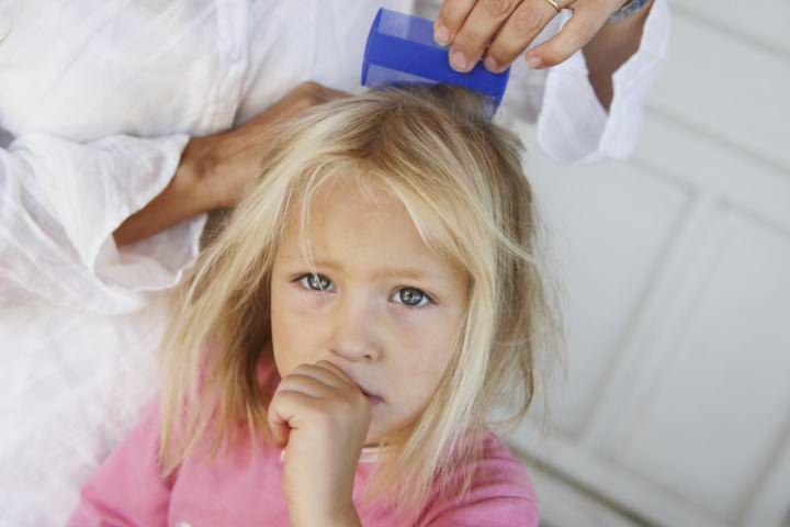 Особенно часто педикулез диагностируется у детей, посещающих дошкольные заведения и школы