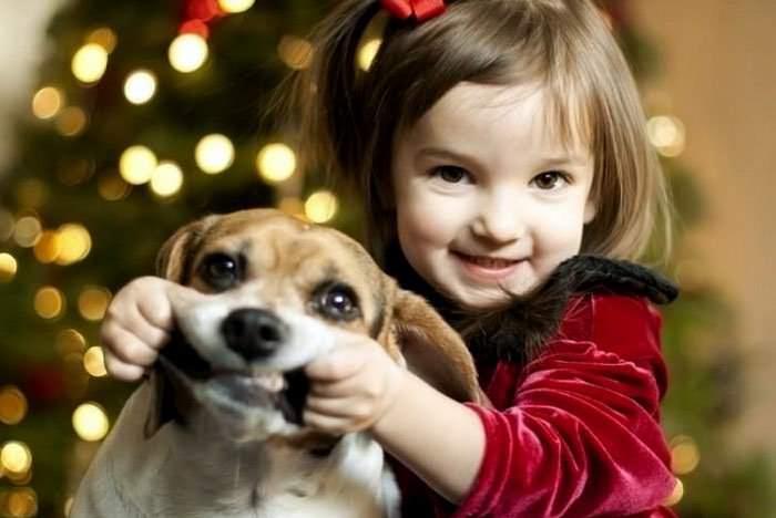 Карандаш «Машенька» нельзя наносить в доме, где есть маленькие дети и животные