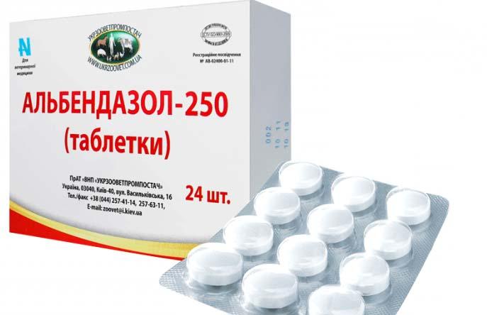 Альбендазол – популярное средство от вшей в виде таблеток
