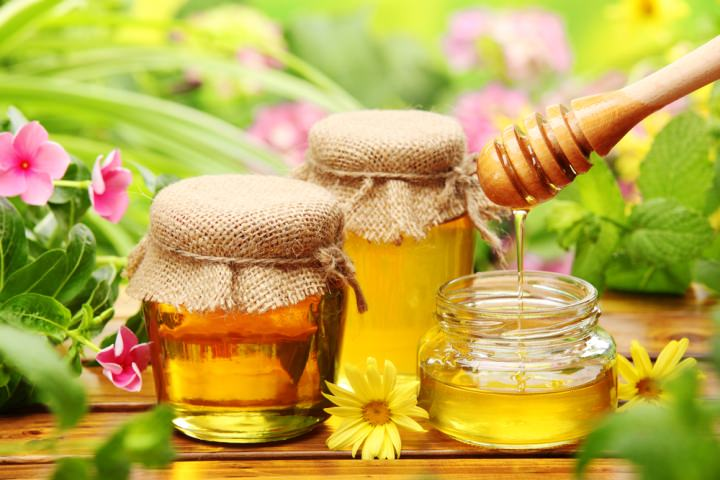 Мёд – один из основных ингредиентов борьбы с домашними муравьями