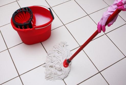 Мытье полов с использованием различных средств избавит от блошиного нашествия