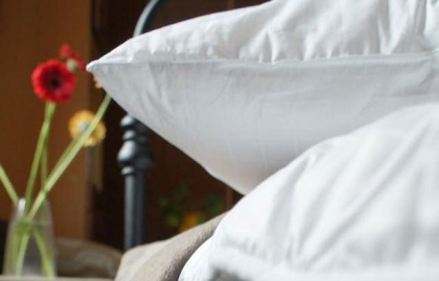 Клещ – это шестилапый жучок, длина тела которого составляет полмиллиметра. Насекомое выбирает постель и подушки местом своего обитания потому, что именно здесь созданы благоприятные условия для жизни – влажно и тепло