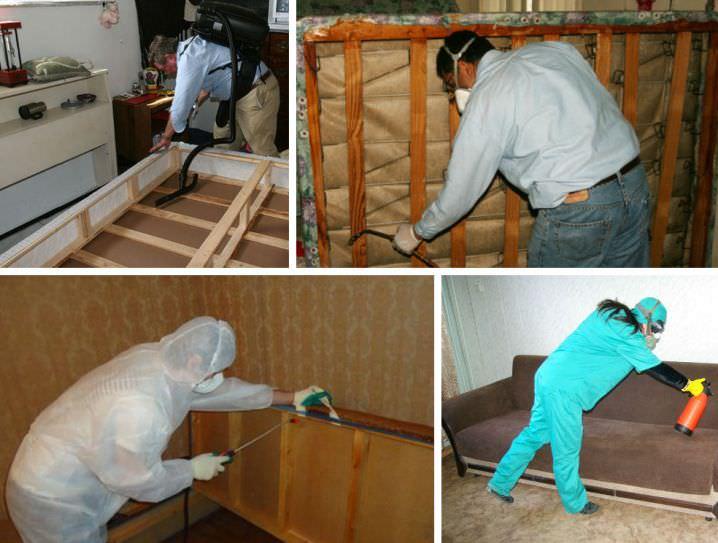 Можно обратиться с санэпидемстанцию или специализированную контору, занимающуюся уничтожением насекомых в домах и квартирах