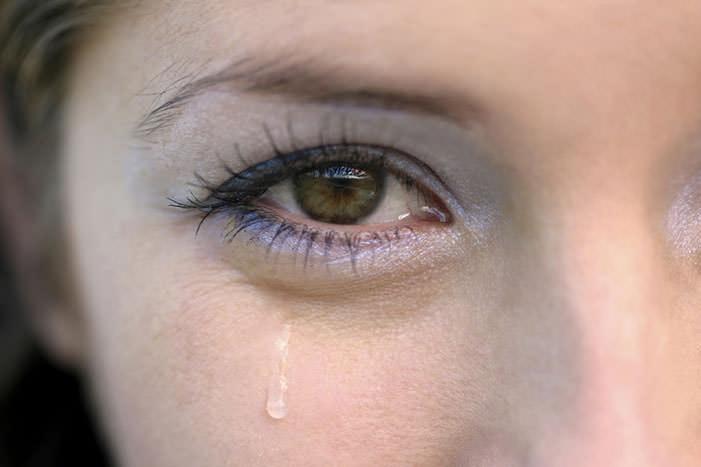 Вред от дафний – не укусы, а аллергия, которая чаще всего проявляется слезотечением