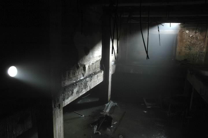Подвал – один из путей попадания блох в дом