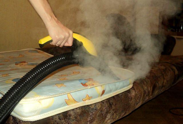 Воздействовать на летающих особей температурой бессмысленно. Тут главное – уничтожить личинок. На одежде, одеялах и т.д. личинки погибают за четверть часа, если ткань прогреется до 53 градусов