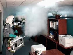 Горячий туман может применяться для уничтожения клопов практически во всех типах помещений