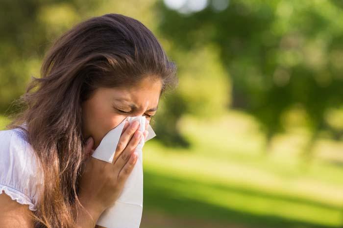 При сборе полыни следует знать, что она является сильным аллергеном