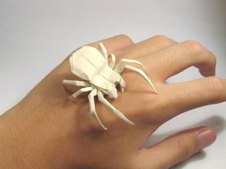 Своевременное правильное лечение позволяет полностью избавиться от интоксикации организма после укуса паука, реабилитация после адекватной терапии не требуется