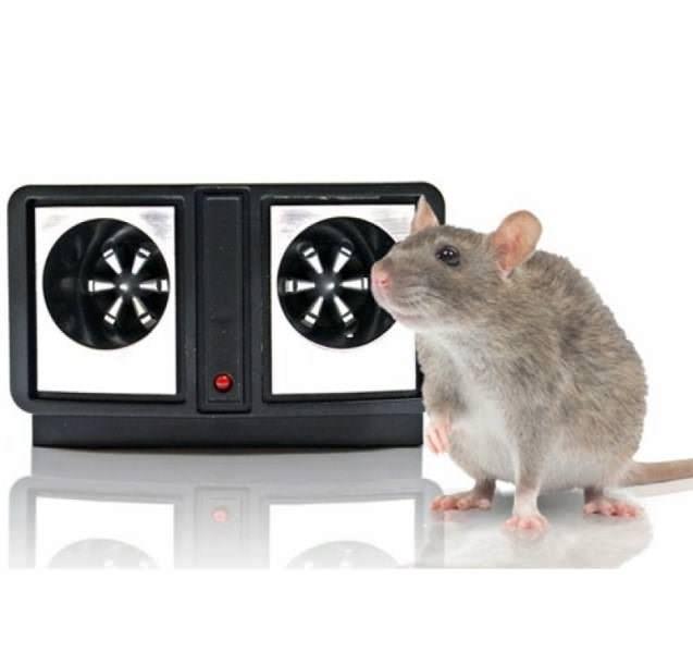 Несмотря на заявления производителей о том, что УЗ-приборы являются одними из наиболее действенных средств против грызунов, подобная техника не всегда работает эффективно