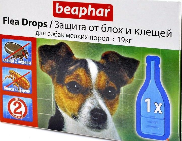 Капли от блох для собак – эффективное и простое средство против блох